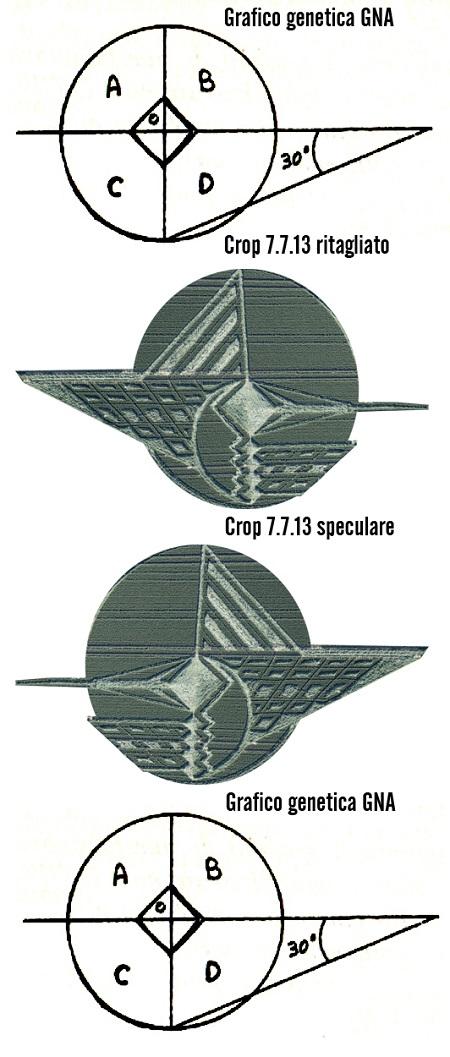 grafico GNA crop confronto speculare450