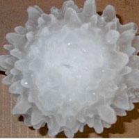 granizocovid